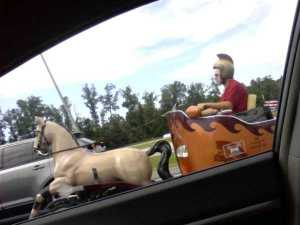 strange-things-seen-on-the-road-33